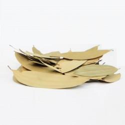 Satvik Whole Bay Leaf/Tej...